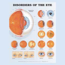"""Diagramm """"Funktionsstörungen des Auges"""""""