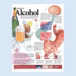 """Diagramm """"Die Gefahren des Alkohols"""""""