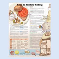 """Diagramm """"Die Erfolgswege zur Gesunden Ernährung"""""""