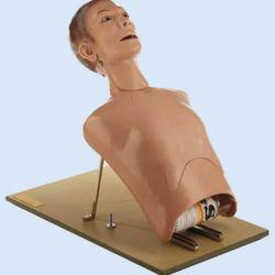 Torso für Intubation und Sondeernährung, auf Klappstativ