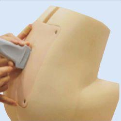 Ultraschall Lumbar / Epidural Simulator