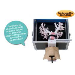 KOKEN- Bronchoskopie-Simulator mit Option für EBUS-TBNA