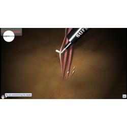 Basismodul für LapSim® VR-Laparoskopie-Simulator mit haptischem Feedback