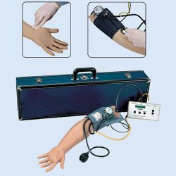 Blood Pressure Simulator