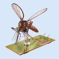 Modell einer Stechmückenkopf, 50x vergrößert, 7 Teile