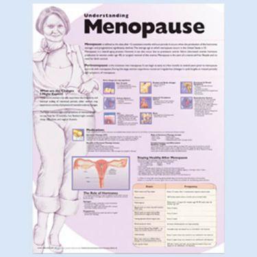 """Diagramm """"Die Menopause"""""""