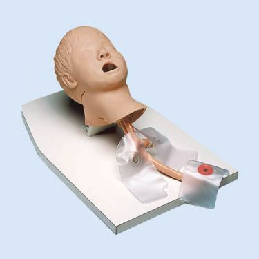 Child Airway Management Trainer with stand