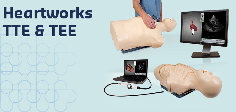 Echokardiografie Simulator für TEE und TTE