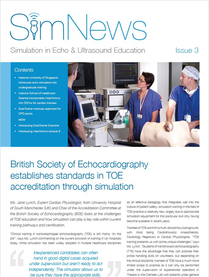 SimNews 2019 Issue 3